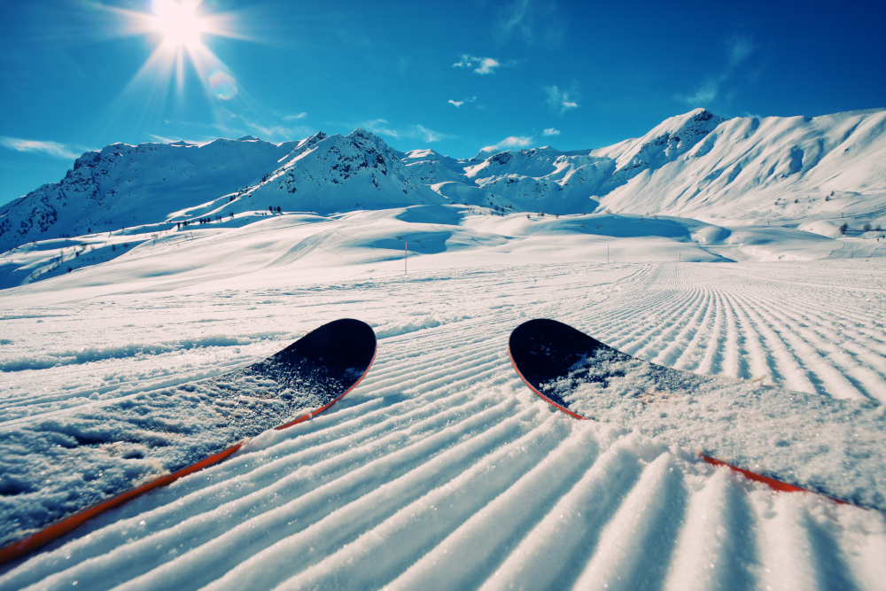 Tips of skis on groomed snow