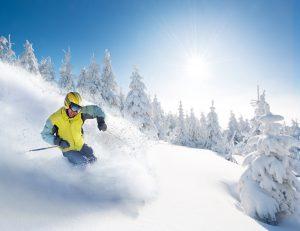 Skier in deep powder