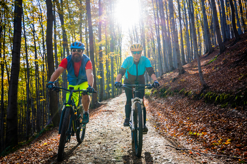 Mountain Bikes for Newcomers
