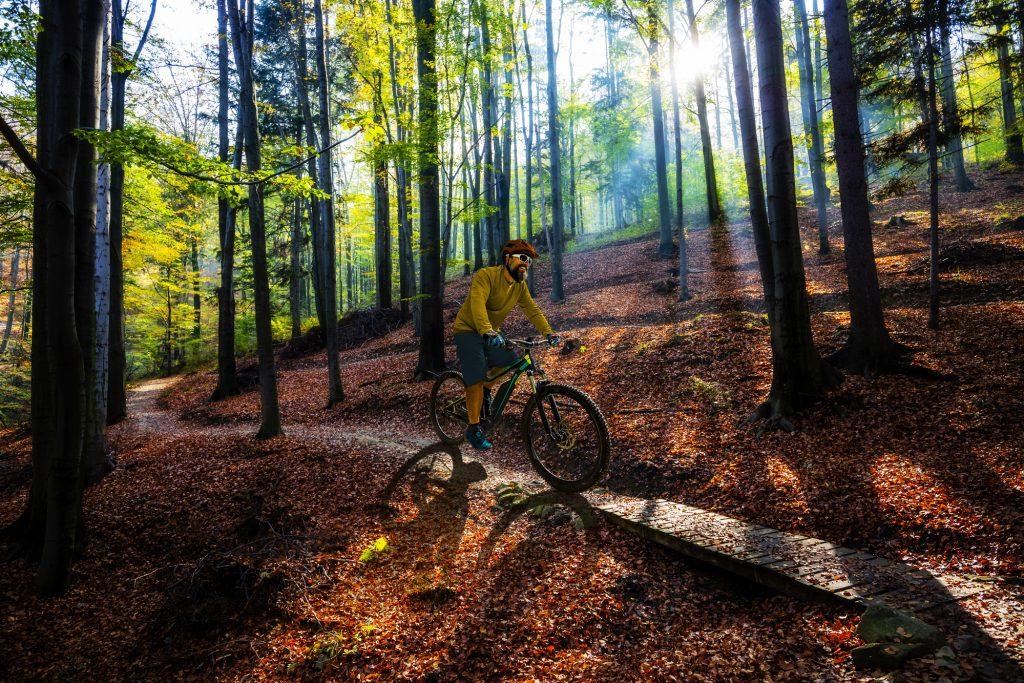 Best Mountan Bikes for under 500 dollars